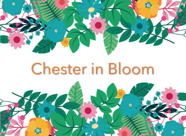 Chester in Bloom